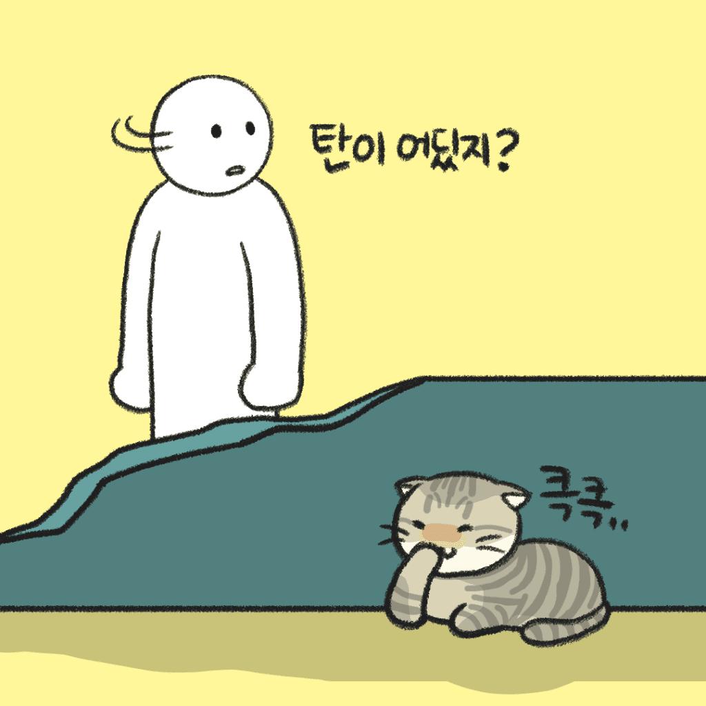 고양이 만화
