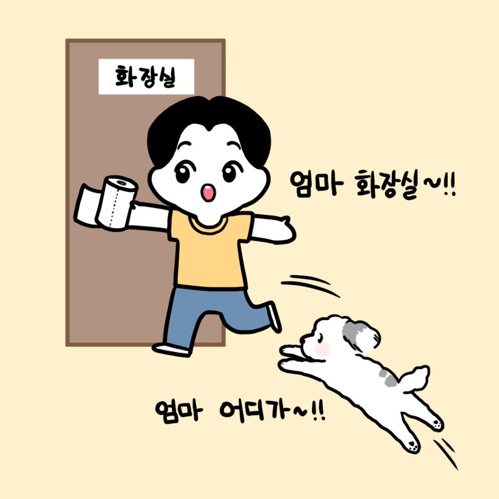 강아지 화장실