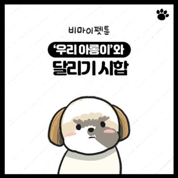 강아지 시츄