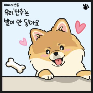 강아지 간식