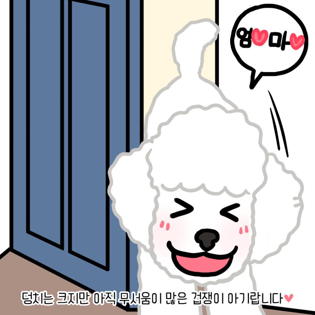 강아지 미소