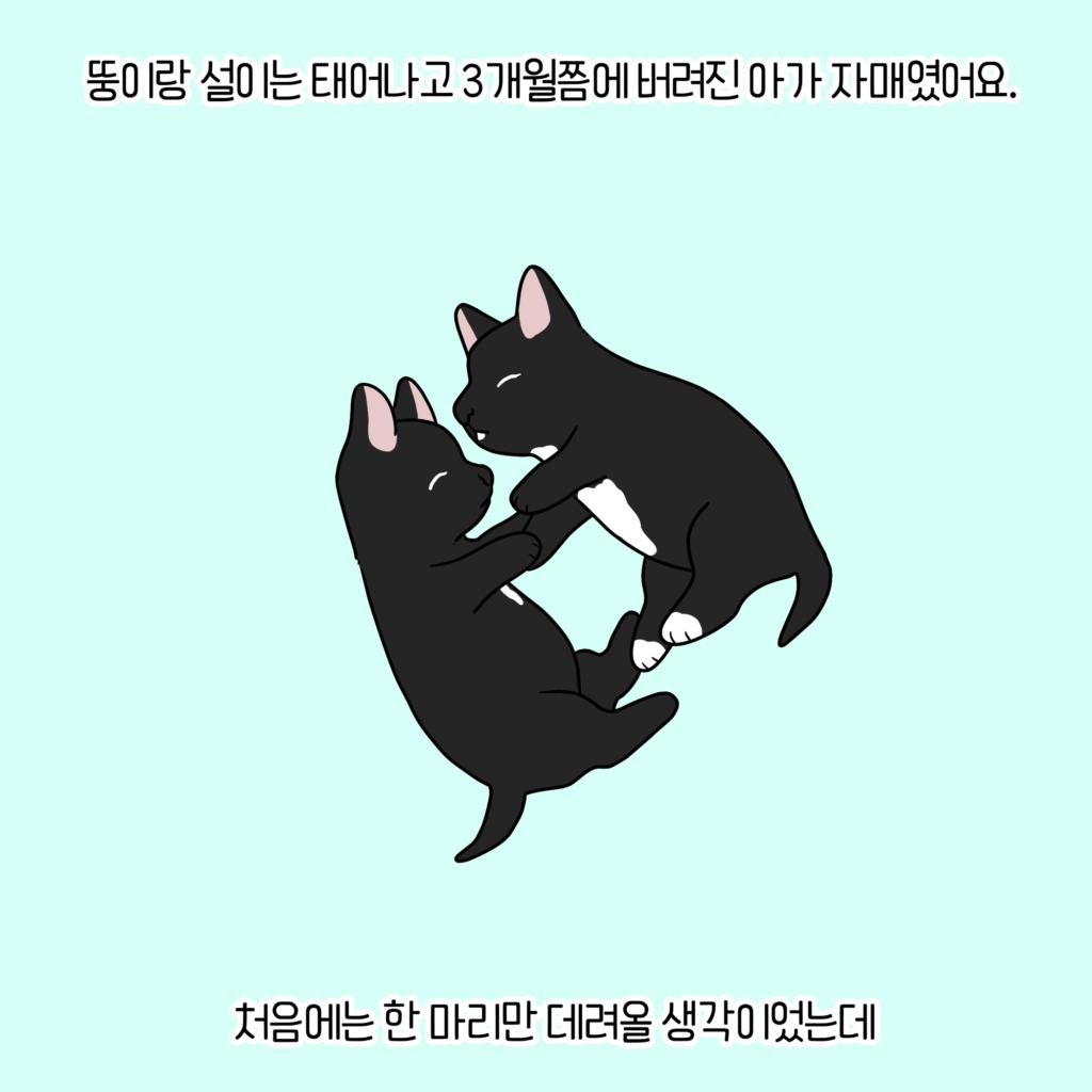 강아지웹툰