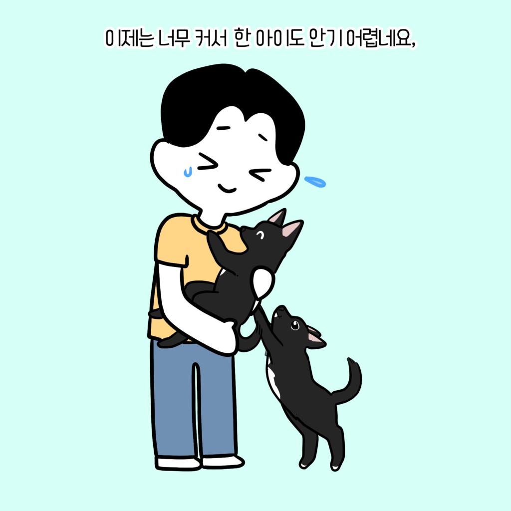 강아지 마킹