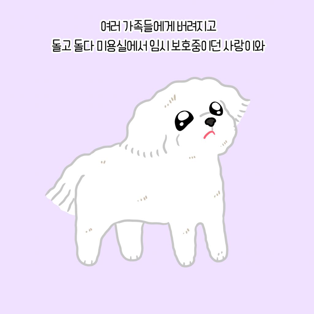 강아지 슬픔