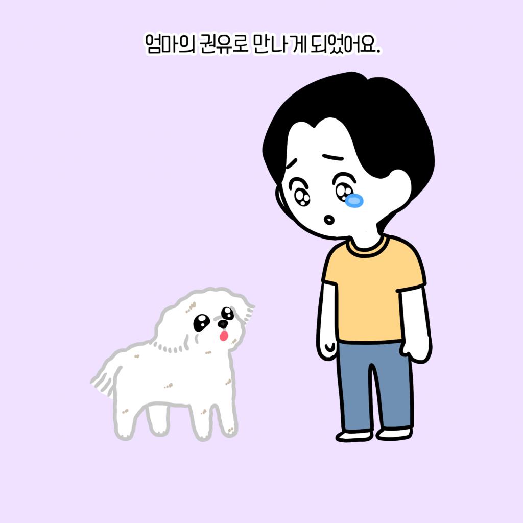 강아지 첫만남