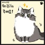 고양이 웹툰