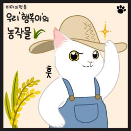 고양이 농사