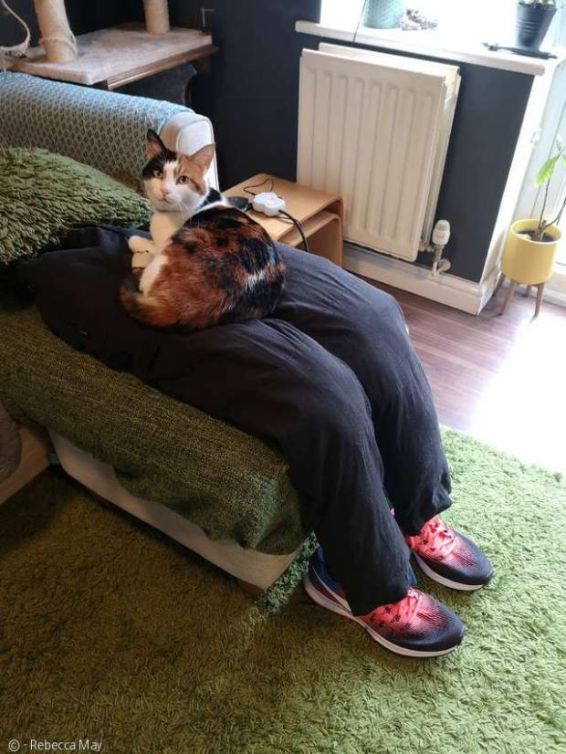 남편 알렉스가 만든 가짜 무릎. 바지 속을 채우고, 전기장판도 넣어 따뜻하게 한 데다, 운동화까지 놔서 감쪽같이 만들었다.