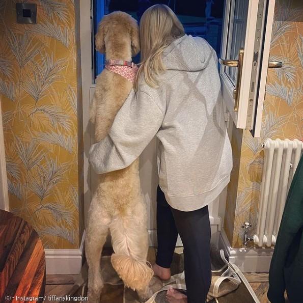 작은 개를 원한 보호자는 이제 큰 개 위니와 사는 것이 행복하다고 한다.